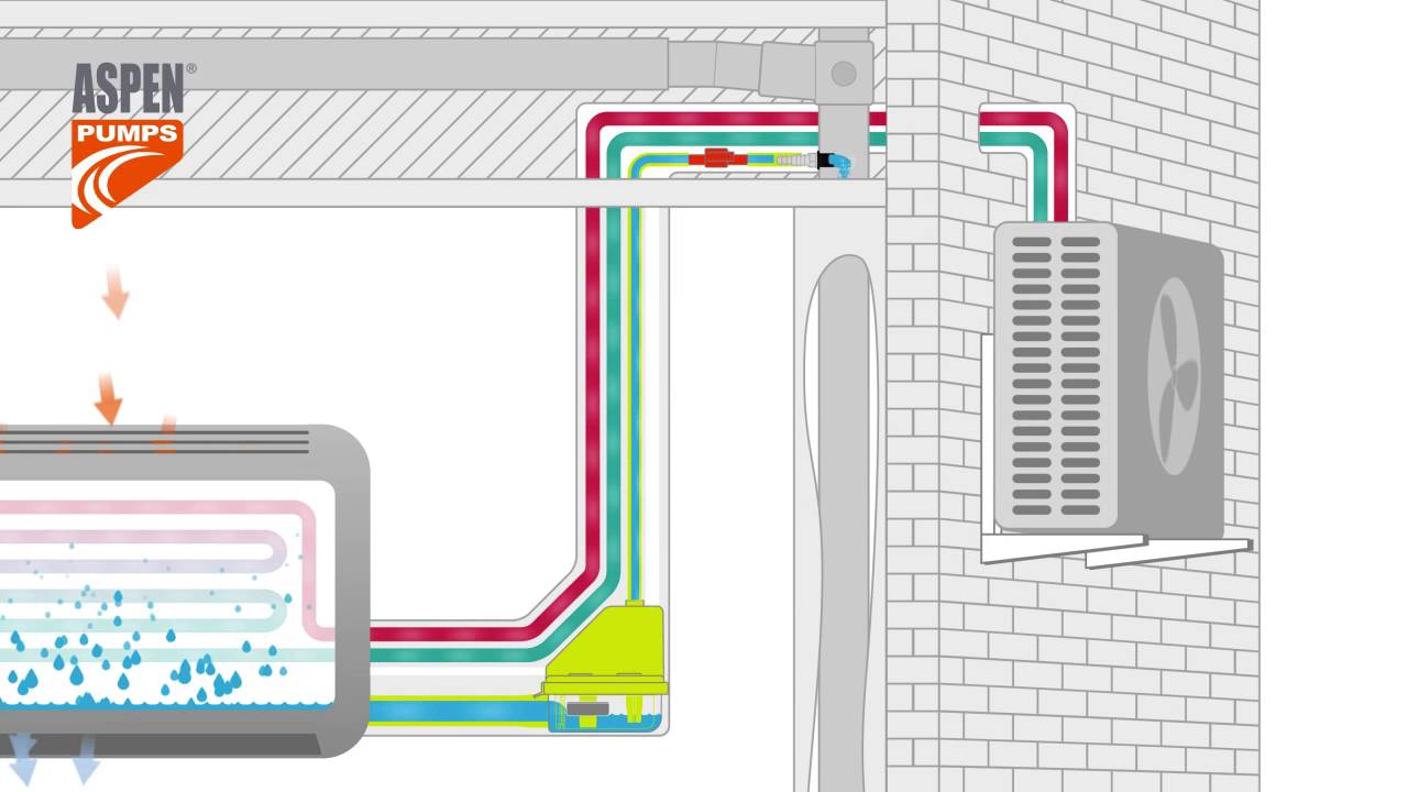 Aspen Condensate Pump Wiring Diagram