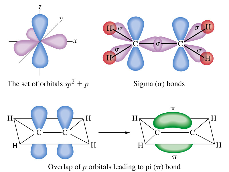 2012 Orbital Hybrization Sigma And Pi Bonds Wiring Diagram