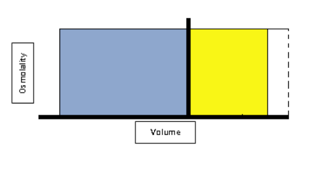 Darrow Yannet Diagram