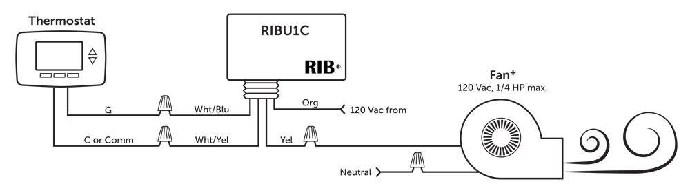 Ribu1c Wiring Diagram