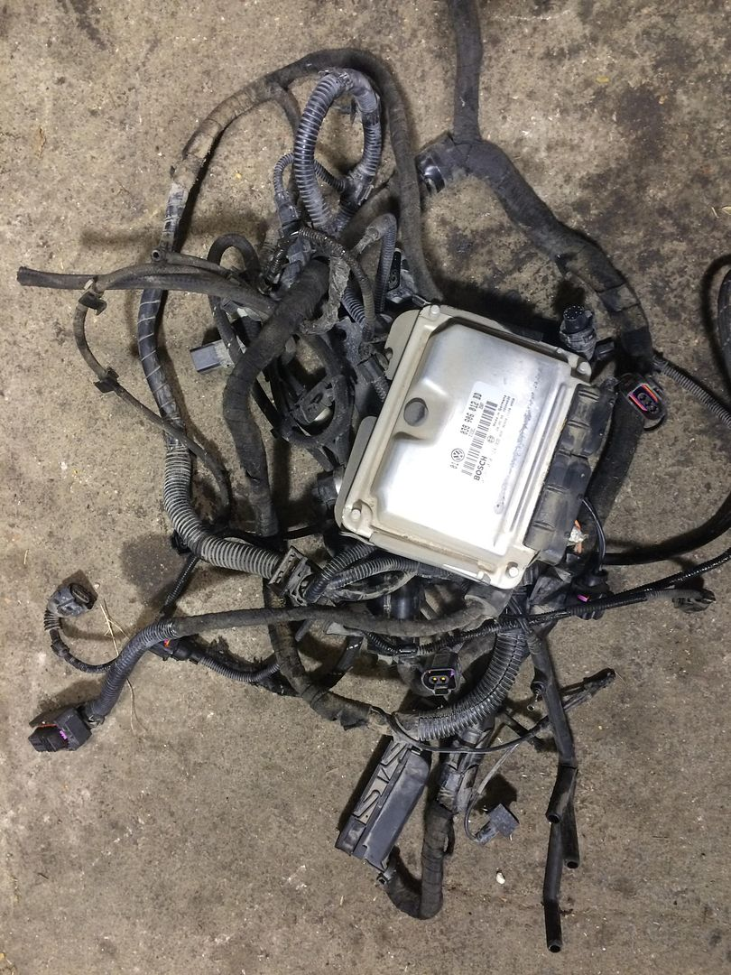 Tdi Swap Wiring Harness