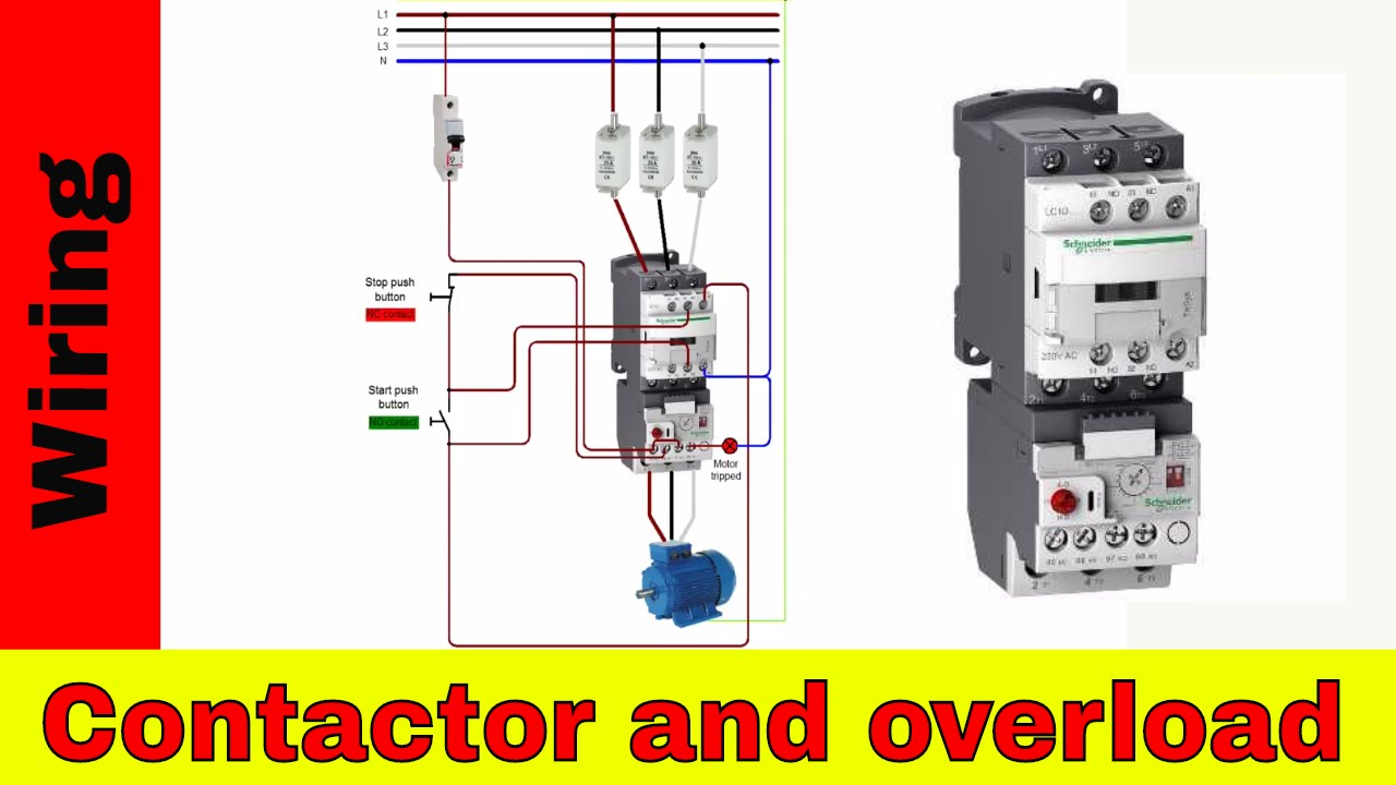 Diagram 3 Phase Magnetic Motor Starter Wiring Diagram Full Version Hd Quality Wiring Diagram Ftengines Chagny Se Transforme Fr